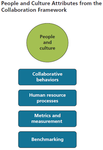 Organizational Behavior and Cultures